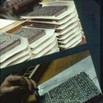 Gallées constituant le livre.